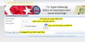 طريقة إدخال المعلومات لمعرفة مراحل الحصول على الجنسية التركية