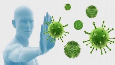 صورة كم يعيش فيروس كورونا داخل جسم الإنسان وهل سيختفي في الصيف؟.. دراسات حديثة تجيب!
