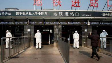 """صورة أخبار سيئة من الصين.. تسجيل إصابات جديدة بـ """"فيروس حمى الخنازير الإفريقية""""..!"""