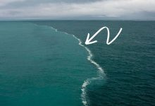 صورة لماذا لا تختلط مياه المحيط الأطلسي بمياه المحيط الهادئ؟