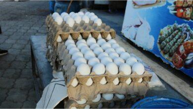 صورة مع ارتفاعات شبه يومية بأسعار معظم المواد الغذائية في سوريا.. أسعار البيض تسجل أرقاماً قياسية غير مسبوقة!
